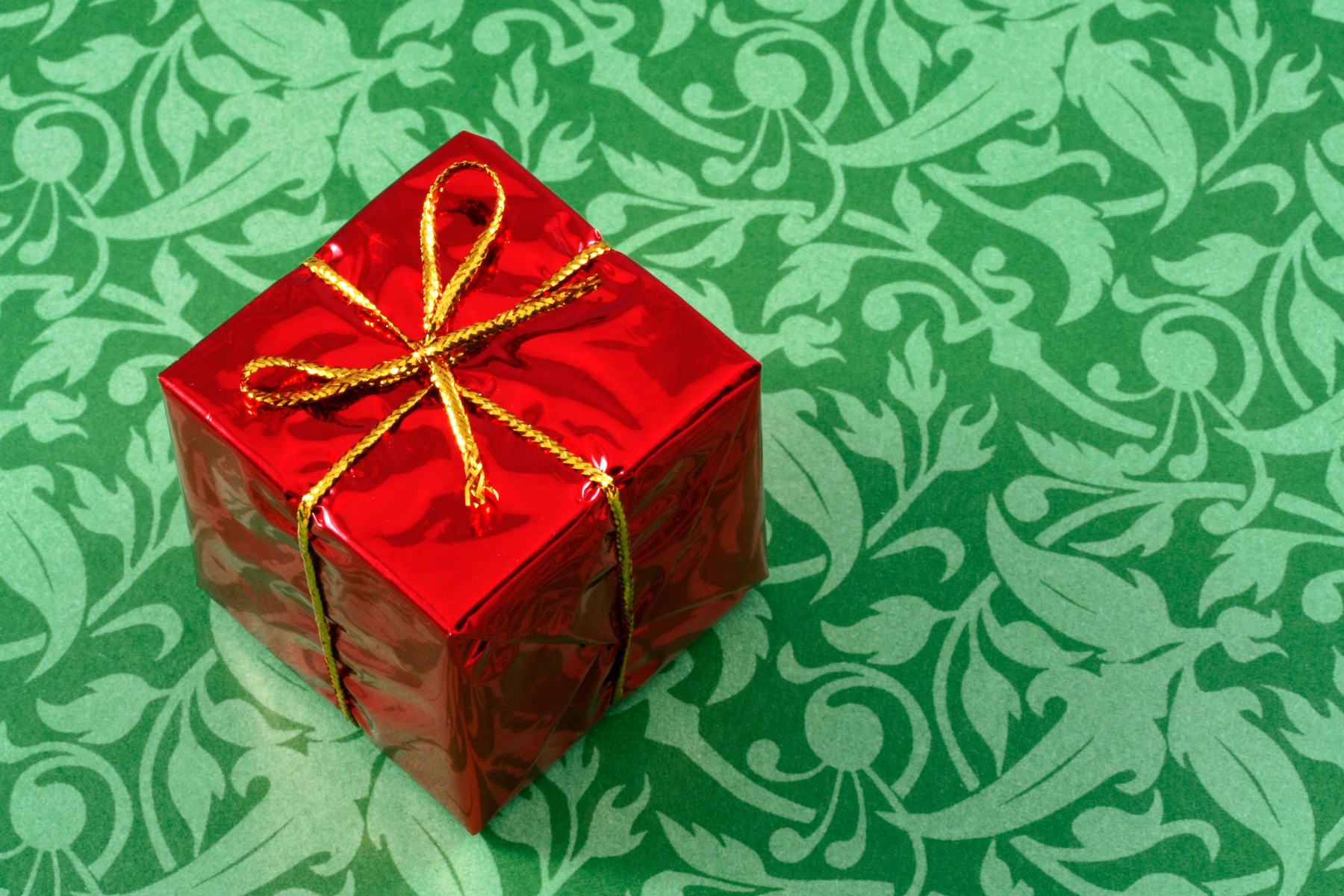 Holiday Shopping Guide 2011 – The Next Step